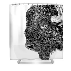 Bison Portrait Shower Curtain