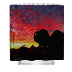 Shower Curtain featuring the photograph Bison Sunset by Larry Trupp