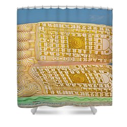Biurma_d1831 Shower Curtain by Craig Lovell