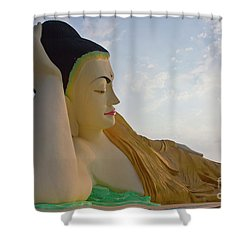 Biurma_d1836 Shower Curtain by Craig Lovell