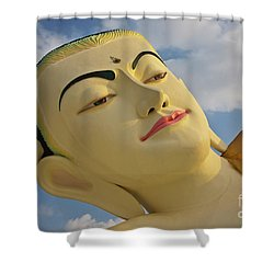 Biurma_d1838 Shower Curtain by Craig Lovell