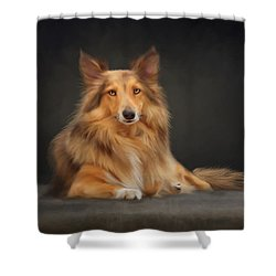 Bizou Shower Curtain