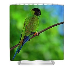 Shower Curtain featuring the photograph Black And Blue by Tony Beck