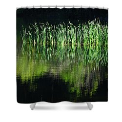 Black And Green Shower Curtain