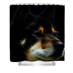 Black And Tan Shiba Inu Shower Curtain by Stuart Turnbull