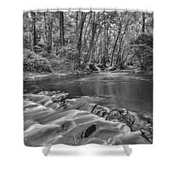 Black And White 36 Shower Curtain