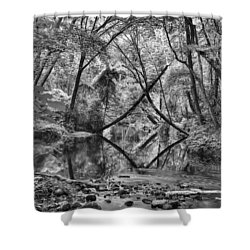 Black And White 40 Shower Curtain