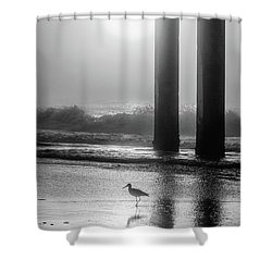 Shower Curtain featuring the photograph Black And White Bird Beach by John McGraw
