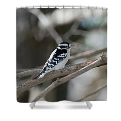 Black And White Bird Shower Curtain