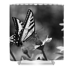 Black And White Butterfly On Flower Shower Curtain
