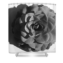 Camellia In Black And White Shower Curtain