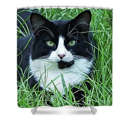 Black And White Cat With Green Eyes Shower Curtain