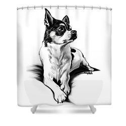 Black And White Chihuahua By Spano Shower Curtain