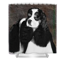 Shower Curtain featuring the photograph Black And White Cookie by EricaMaxine  Price
