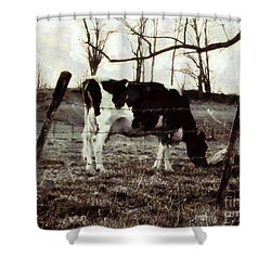 Shower Curtain featuring the photograph Black And White - Cow In Pasture - Vintage by Janine Riley