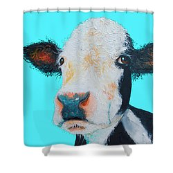 Black And White Cow On Blue Background Shower Curtain by Jan Matson