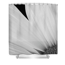 Black And White Daisy Flower Peeking Shower Curtain