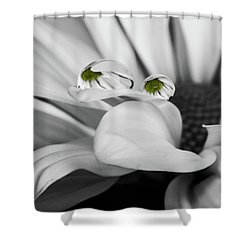 Black And White Daisy Water Shower Curtain