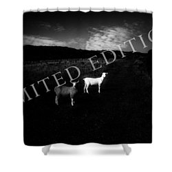 Black And White Shower Curtain by Dorit Fuhg