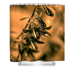 Shower Curtain featuring the photograph Black And White Harebells 2  by Leif Sohlman