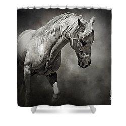 Black And White Horse - Equestrian Art Poster Shower Curtain