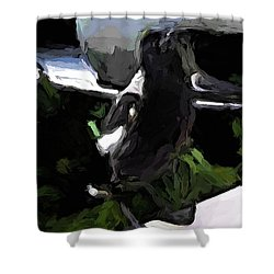 Black And White Magpie On The Porch Shower Curtain