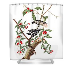 Shower Curtain featuring the photograph Black And White by Munir Alawi