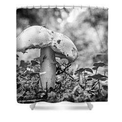 Black And White Mushroom. Shower Curtain