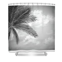 Shower Curtain featuring the digital art Black And White Palm by Darren Cannell