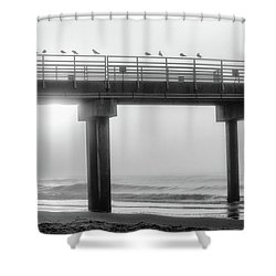 Shower Curtain featuring the photograph Black And White Pier Alabama  by John McGraw