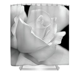 Shower Curtain featuring the photograph Black And White Rose Flower by Jennie Marie Schell