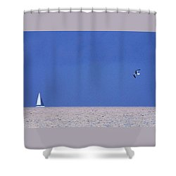 Black And White Sailboat And Seagull Shower Curtain