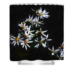 Black And White Study II Shower Curtain by David Lane