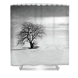 Black And White Tree In Winter Shower Curtain