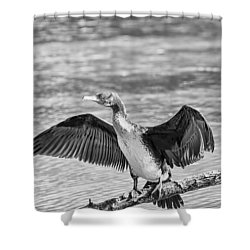Black And White Welcome In Shower Curtain by Leif Sohlman