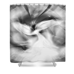 Black And White Whirling Dervish Shower Curtain