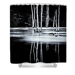 Black And White Winter Thaw Relections Shower Curtain by Tom Singleton