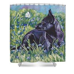 Black Australian Kelpie Shower Curtain by Lee Ann Shepard