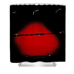 Black Barbed Wire Over Black And Blood Red Background Eery Imprisonment Scene Shower Curtain