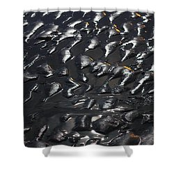 Black Beach Shower Curtain