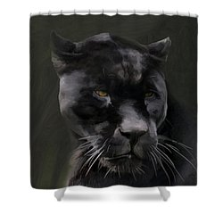 Black Beauty Shower Curtain by Vic Weiford