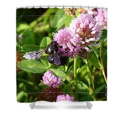 Black Bee On Small Purple Flower Shower Curtain