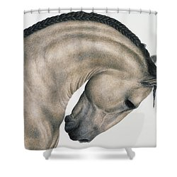 Black Braid Shower Curtain