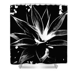 Black Cactus  Shower Curtain