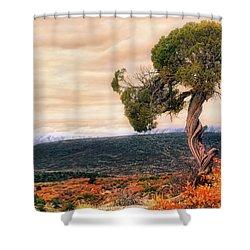 Black Canyon Juniper - Colorado - Autumn Shower Curtain by Jason Politte