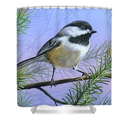 Shower Curtain featuring the painting Black Cap Chickadee by Mike Brown