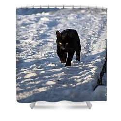 Black Cat In Snow Shower Curtain