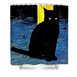 Black Cat Yellow Eyes Shower Curtain