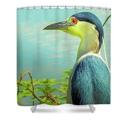 Black-crowned Night Heron Digital Art Shower Curtain