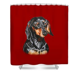 Shower Curtain featuring the painting Black Dachshund Accessories by Jimmie Bartlett